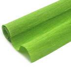 Thick Crepe paper, Light green, 40cm x 100cm, 1 sheet