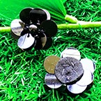 Sequin flower, black, 1 Sequin flower, 2.7cm