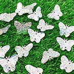 Sequins, Silver colour, 19mm x 23mm, 57 pieces, 5g, Butterfly shape, Sequins are shiny
