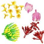 Plastic flower stamens