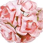 Tea rose - Paper