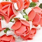 Rose 1 - foam