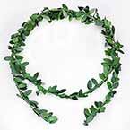 Rattan leaves