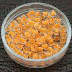 Glass Seed beads - colour core