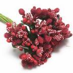 Special Flower Stamens