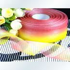 Colour Organza ribbon