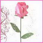 Single rosebuds