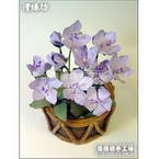 Paper flower making kit, Light purple, Spray Orchid, 10 flowers
