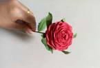 Crepe Roses