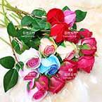 Red roses, nylon flowers