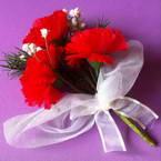 Corsage, Plastic, red, 1 Corsage, 16cm x 11cm