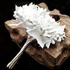 Mini Bouquet Flower Stamen - Pearlescent, white, 10 pieces, Long 9cm