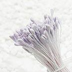 Matt cereal Stamens, Light purple, Matt (not shiny), 170 pieces (approximate)