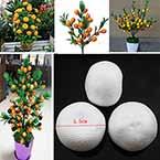 Oranges, foam, white, 5.5cm x 5.5cm x 4cm, 10 pieces