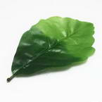 Sunflower leaf, Plastic, Dark green, 15.2cm x 8.3cm (approximate), 5 pieces