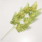 Other Leaves, Plastic, Gold colour, green, 38cm x 14cm (approximate), 2 pieces
