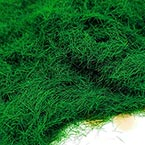 Artificial Fluffy Moss, Dark green, 10g