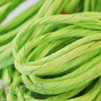 Paper ribbon, Bright green, 4m x 4mm