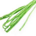 Paper cord with wire, green, 10m x 2mm
